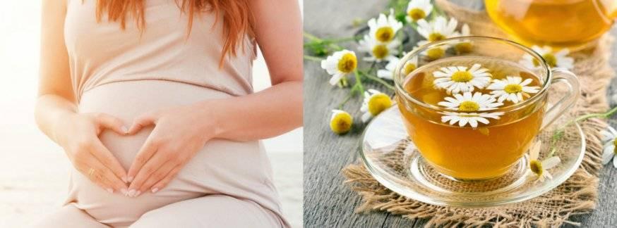 Ромашка при наступившей беременности: как можно пить от кашля и простуды и почему нельзя злоупотреблять?