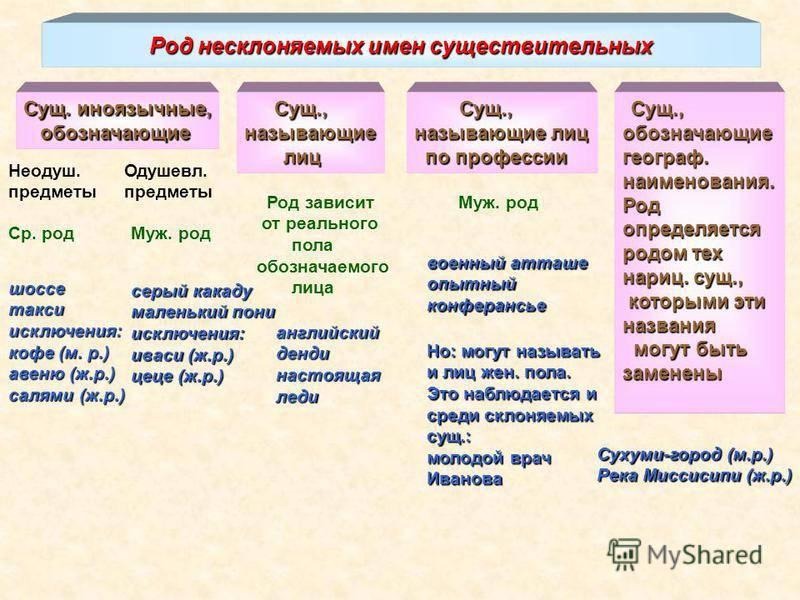 Какого рода слово кофе — разбираемся в русском языке