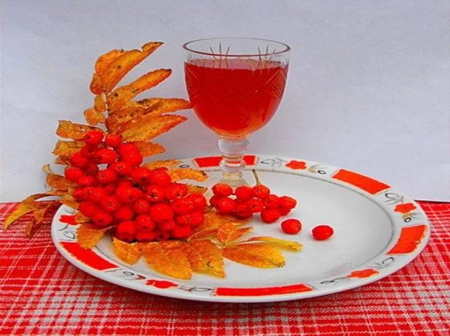 Протертая рябина красная с сахаром. полезные свойства красной рябины | школа красоты