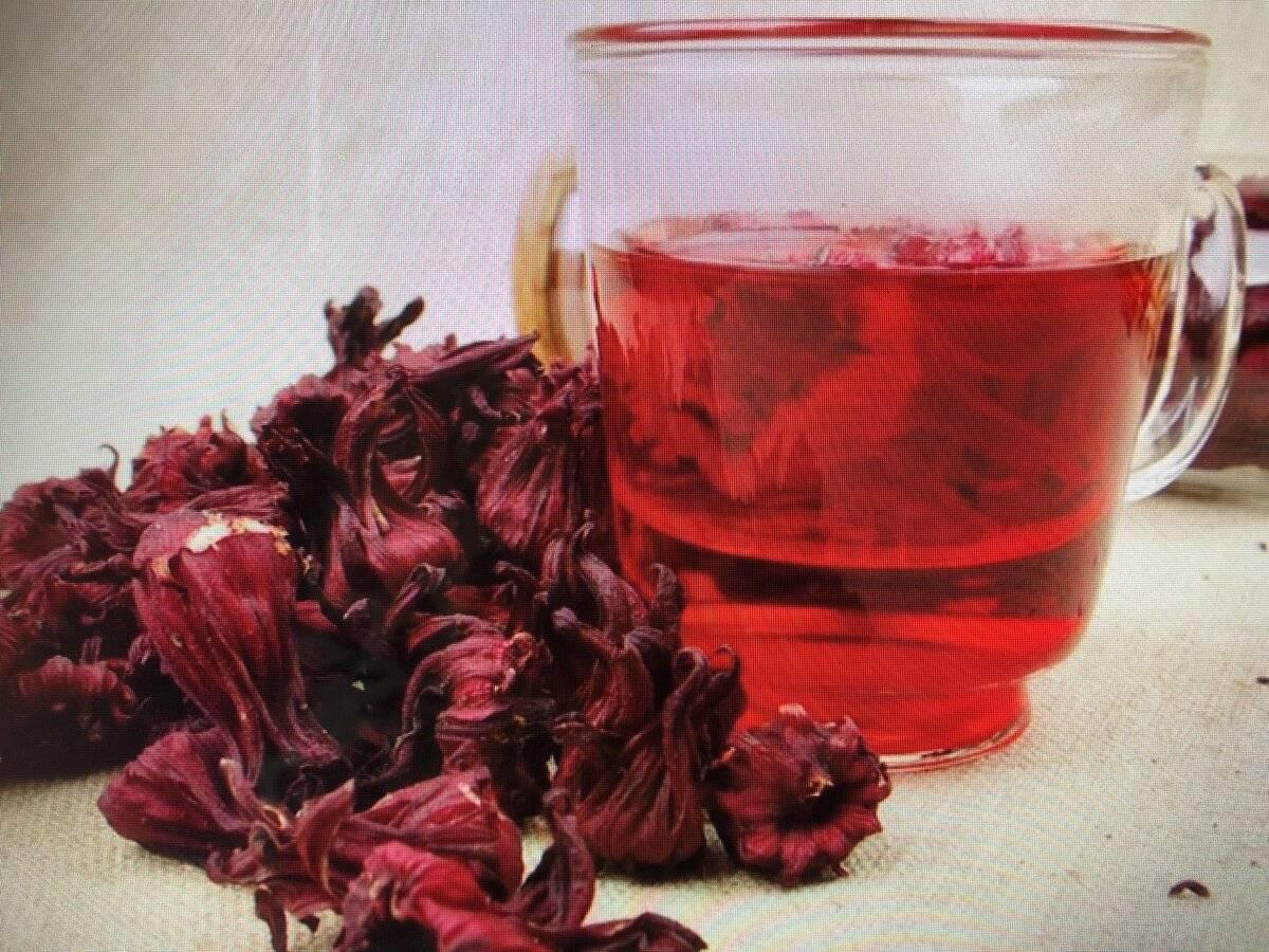Как пить чай каркаде для похудения
