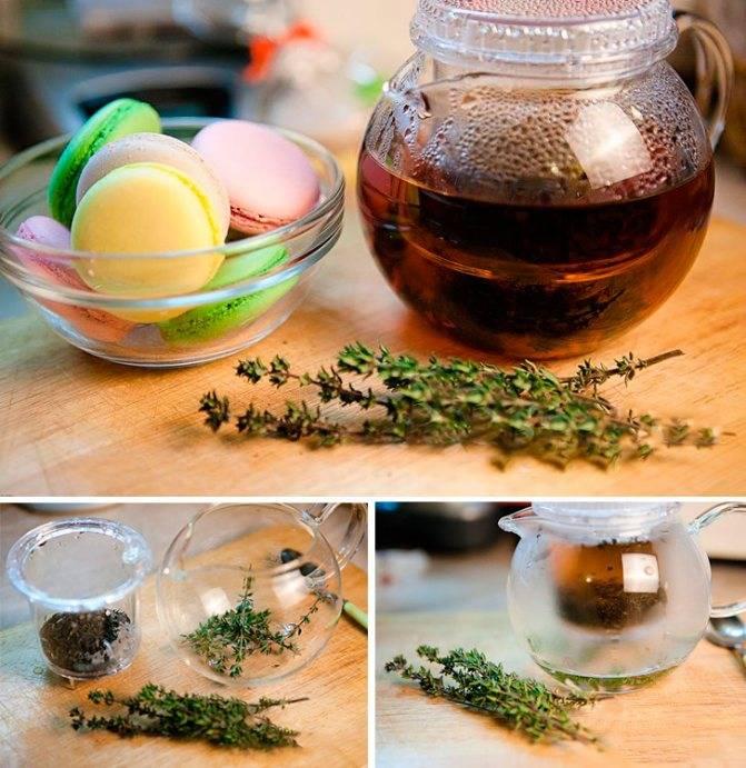 Лечебные свойства и противопоказания растения иван-чай, как заваривать