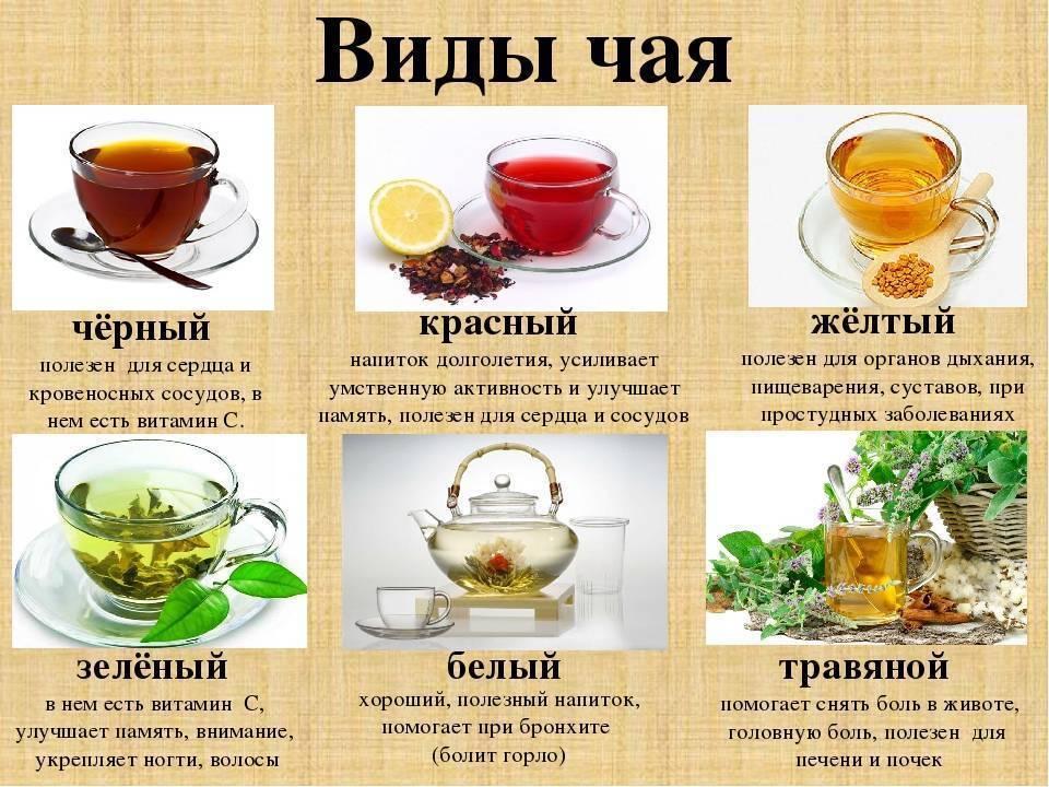 Польза и вред кофе с коньяком: рецепт