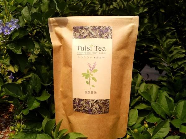 Чай тулси: полезные свойства и противопоказания, польза и вред