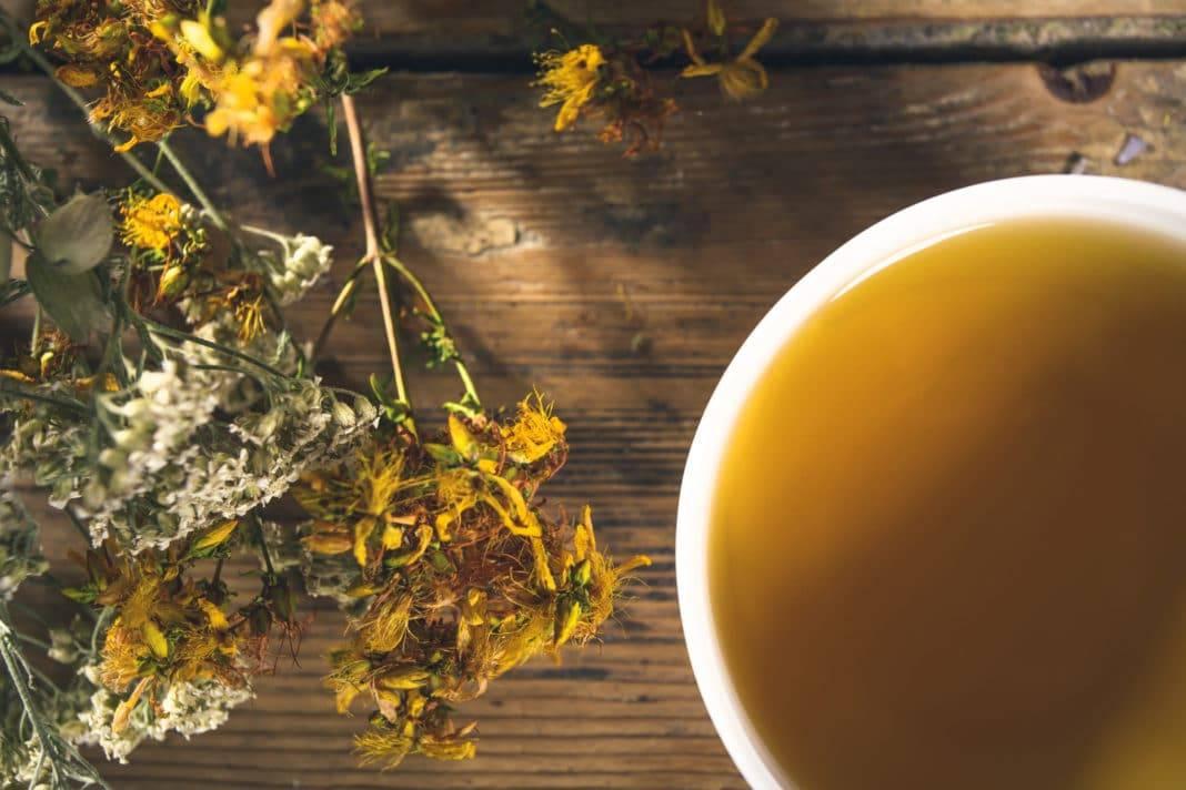 Чай из зверобоя - польза и вред для мужчин и женщин