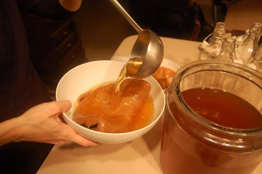 Чайный гриб: полезные свойства и противопоказания, состав, рецепты