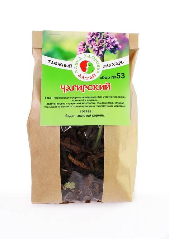 Бадан-чай: польза и вред монгольского напитка, свойства растения и рецепт лечебной заварки из листьев