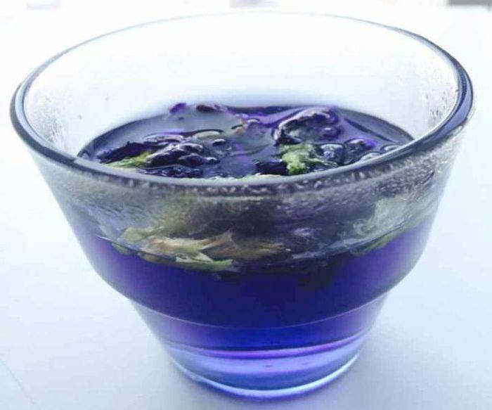 Синий чай анчан из тайланда