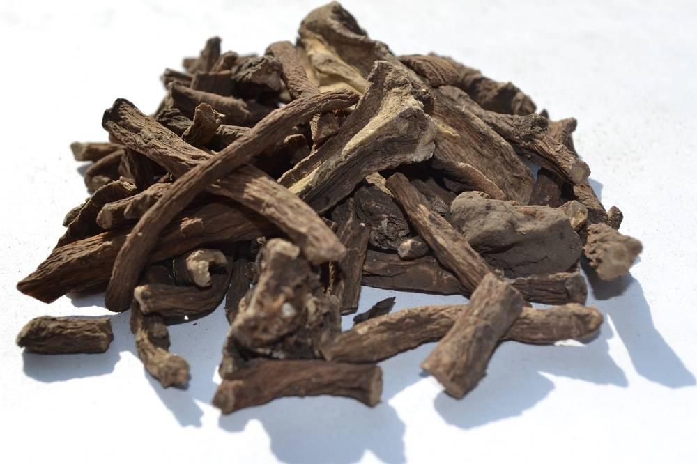 Одуванчик (корень, листья и цветы) - лечебные свойства и противопоказания, народные рецепты