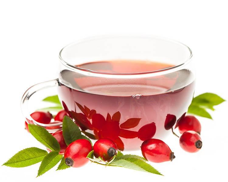 Чем полезен чай из шиповника для организма - свойства, как правильно заваривать  