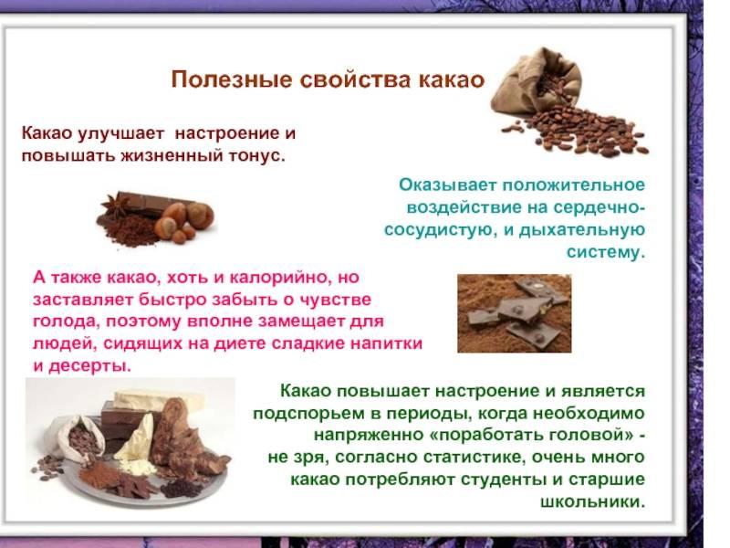 Шоколадное дерево: описание, применение и полезные свойства