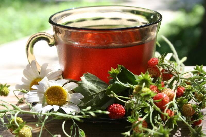 Успокаивающие чаи на основе травяных растений — действенный метод в борьбе со стрессом