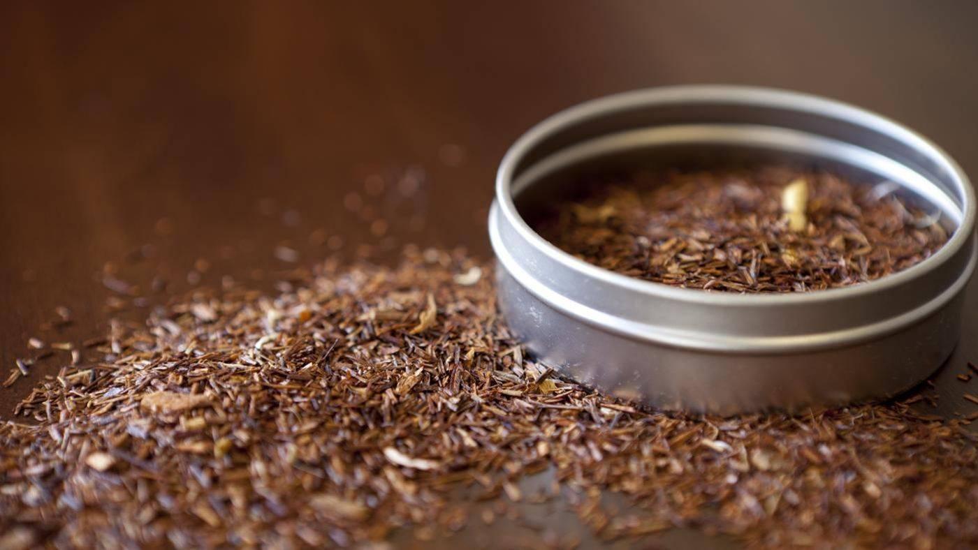 Необычный чай ройбуш с тонким вкусом и ароматом: полезные свойства, рекомендации по приготовлению и противопоказания