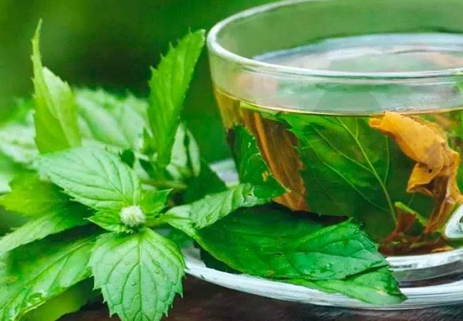Можно ли пить мятный чай мужчинам