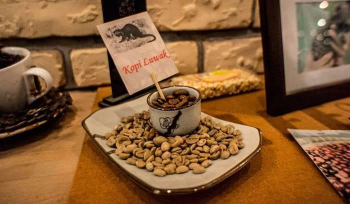 Музей кофе описание и фото - россия - санкт-петербург: санкт-петербург