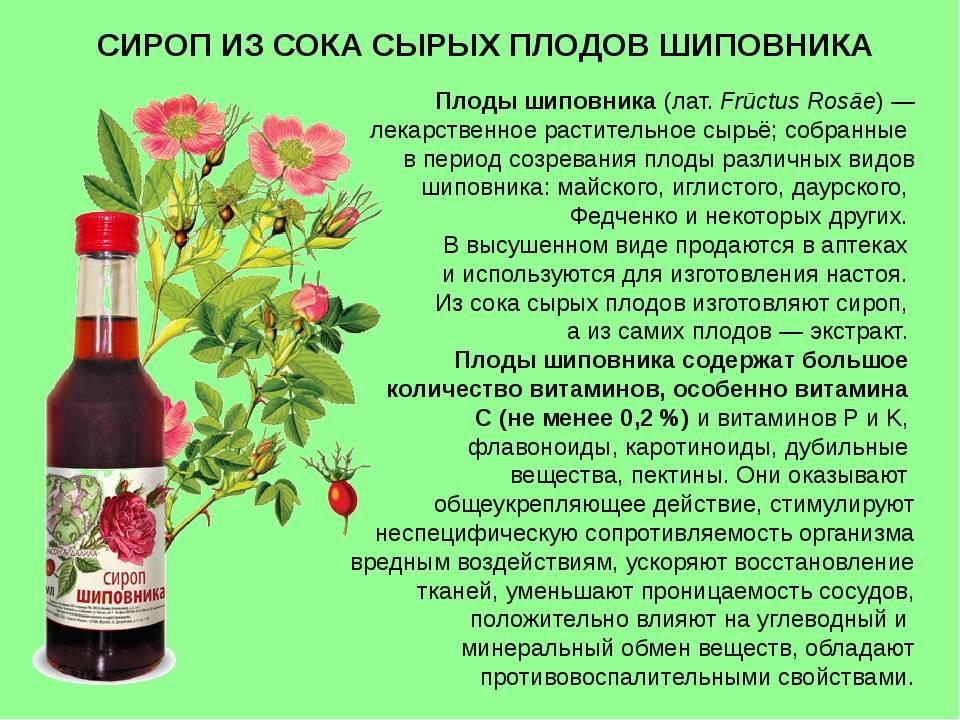 Варенье из шиповника – 15 рецептов приготовления