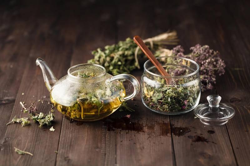 Успокаивающие чаи из лекарственных трав: рецепты сборов | народная медицина