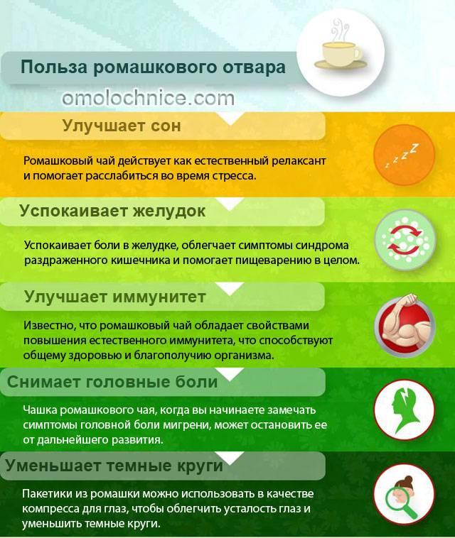 Польза ромашкового чая для женщин: здоровье и красота