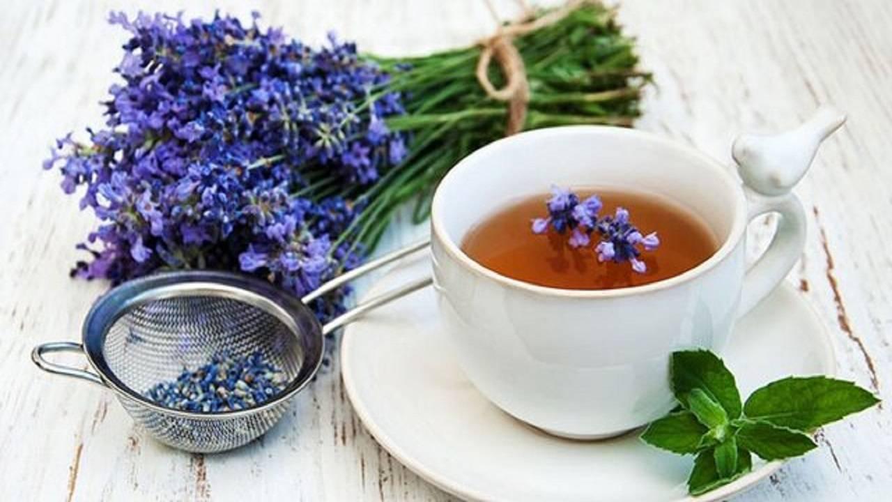 Лекарственные свойства шалфея. как заваривать чай