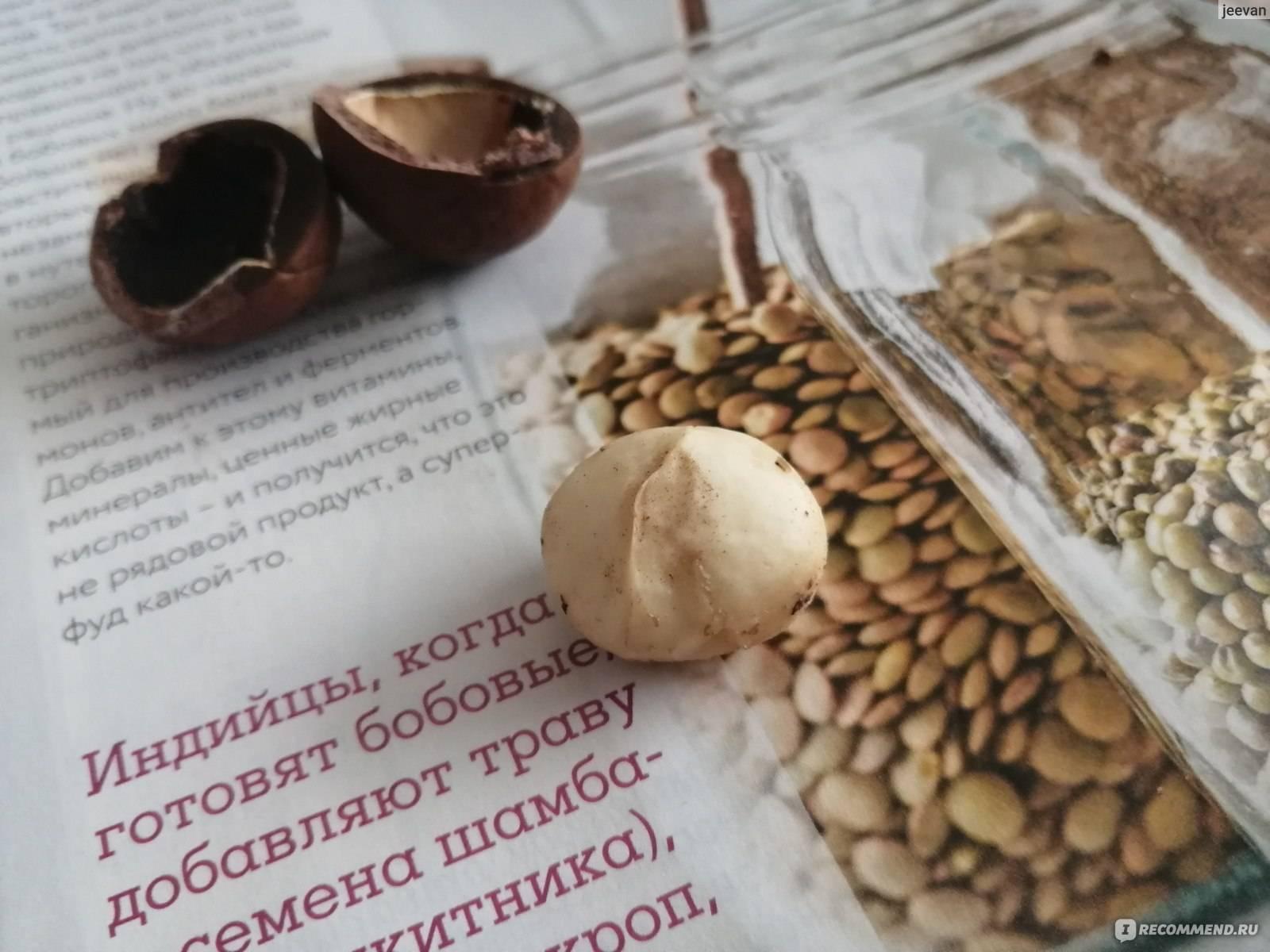 Можно ли есть кофейные зерна? польза и вред   пища это лекарство