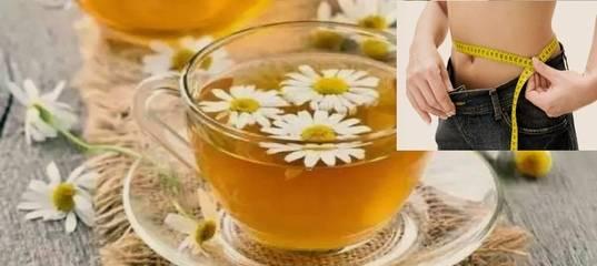 Чай из ромашки – целебный напиток для нашего здоровья