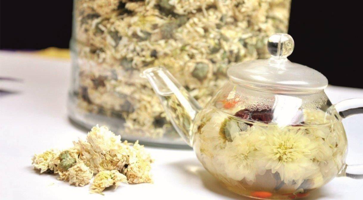 Чай из хризантемы польза и вред