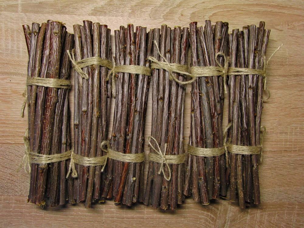 Ветки черной смородины — лечебные свойства, как заваривать чай из веточек