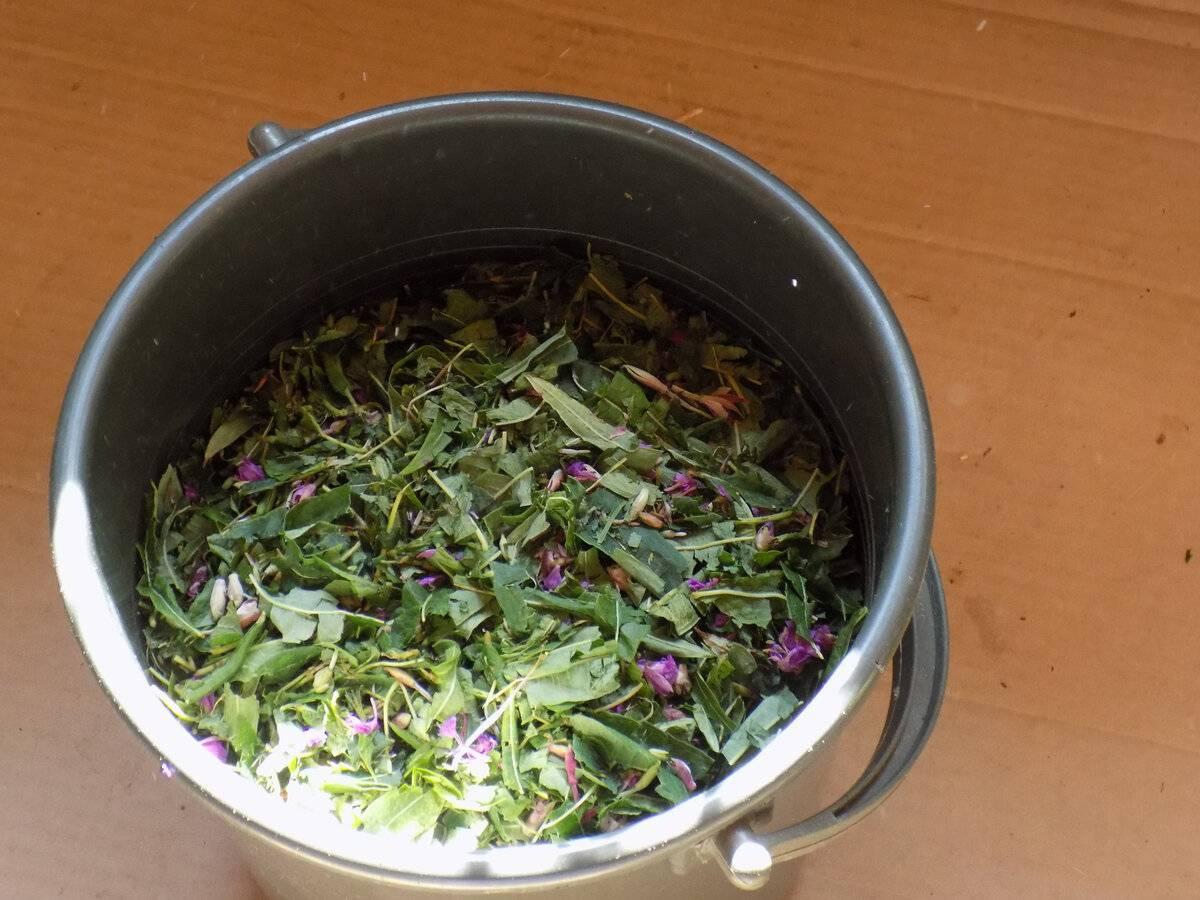 Как сушить иван чай: способы сушки в домашних условиях