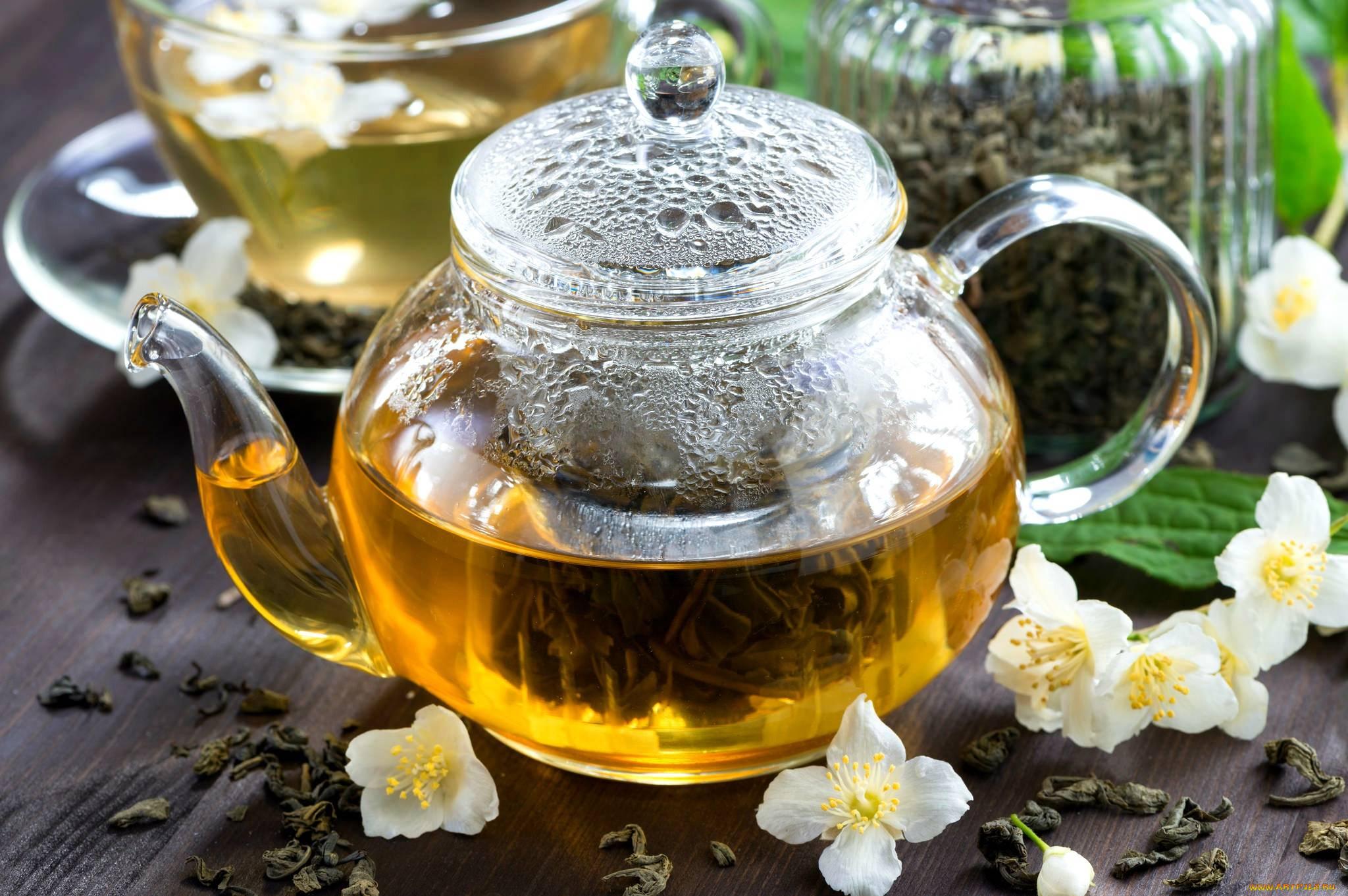 Чай с жасмином - польза и вред для здоровья, полезные свойства и противопоказания