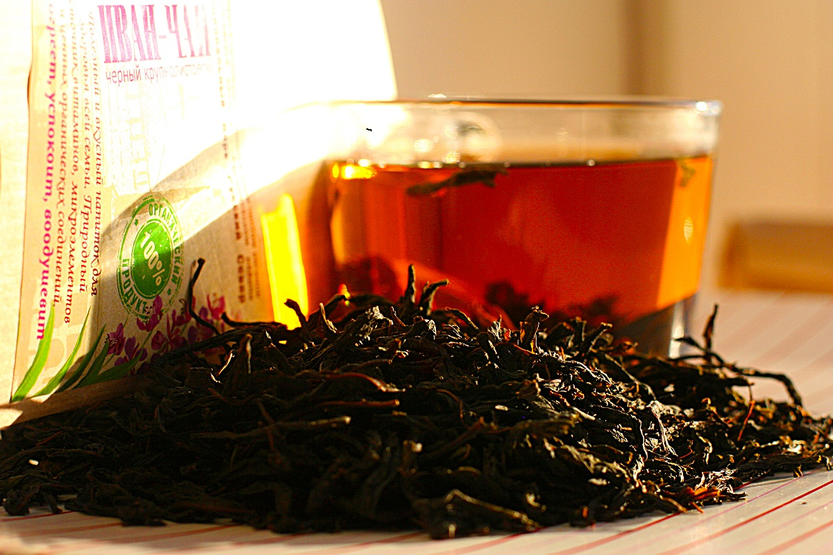 Чай из кипрея - польза и вред, как правильно сушить кипрей для чая?