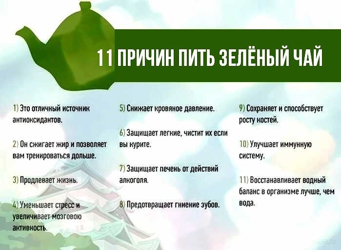 Зеленый чай - польза и вред для женщин и мужчин