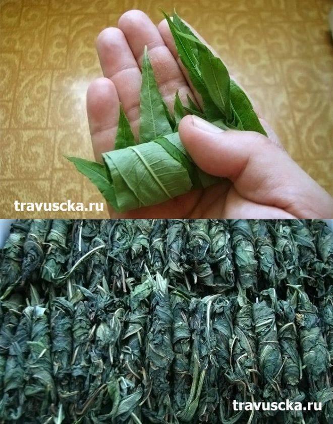 Копорский чай приготовление в домашних условиях видео, фото