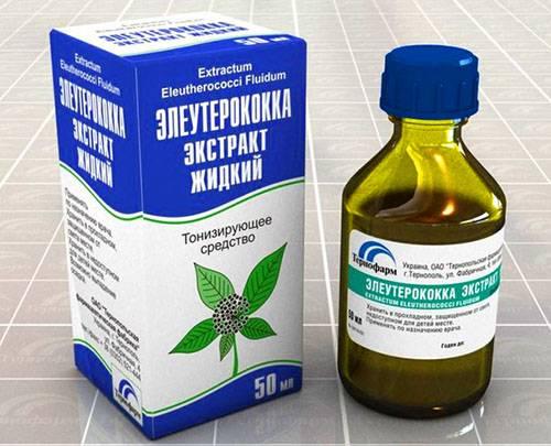 Экстракт элеутерококка жидкий: показания, особенности применения, рецепты - здоровье - медиаплатформа миртесен