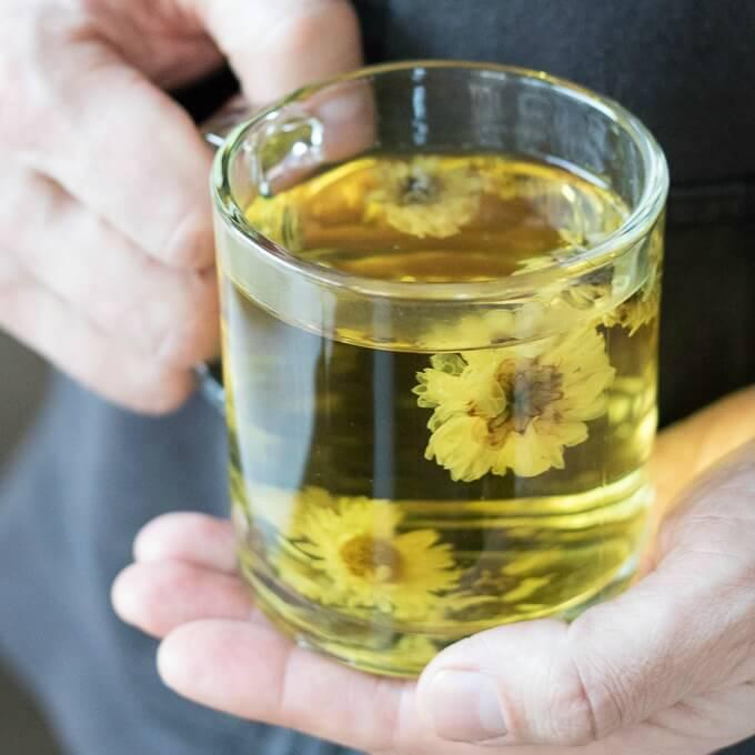 Хризантема: лечебные свойства и противопоказания, польза и вред