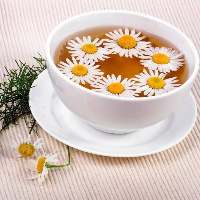 Можно ли давать чай из ромашки грудничку?