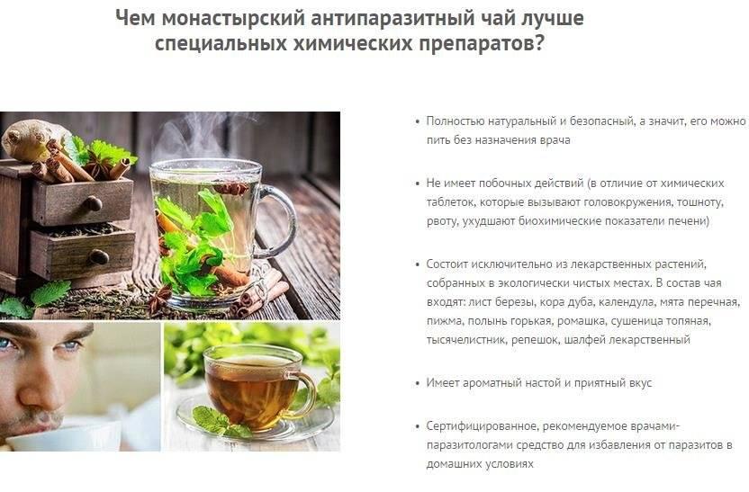 Монастырский чай для желудка: состав, правила заваривания, отзывы