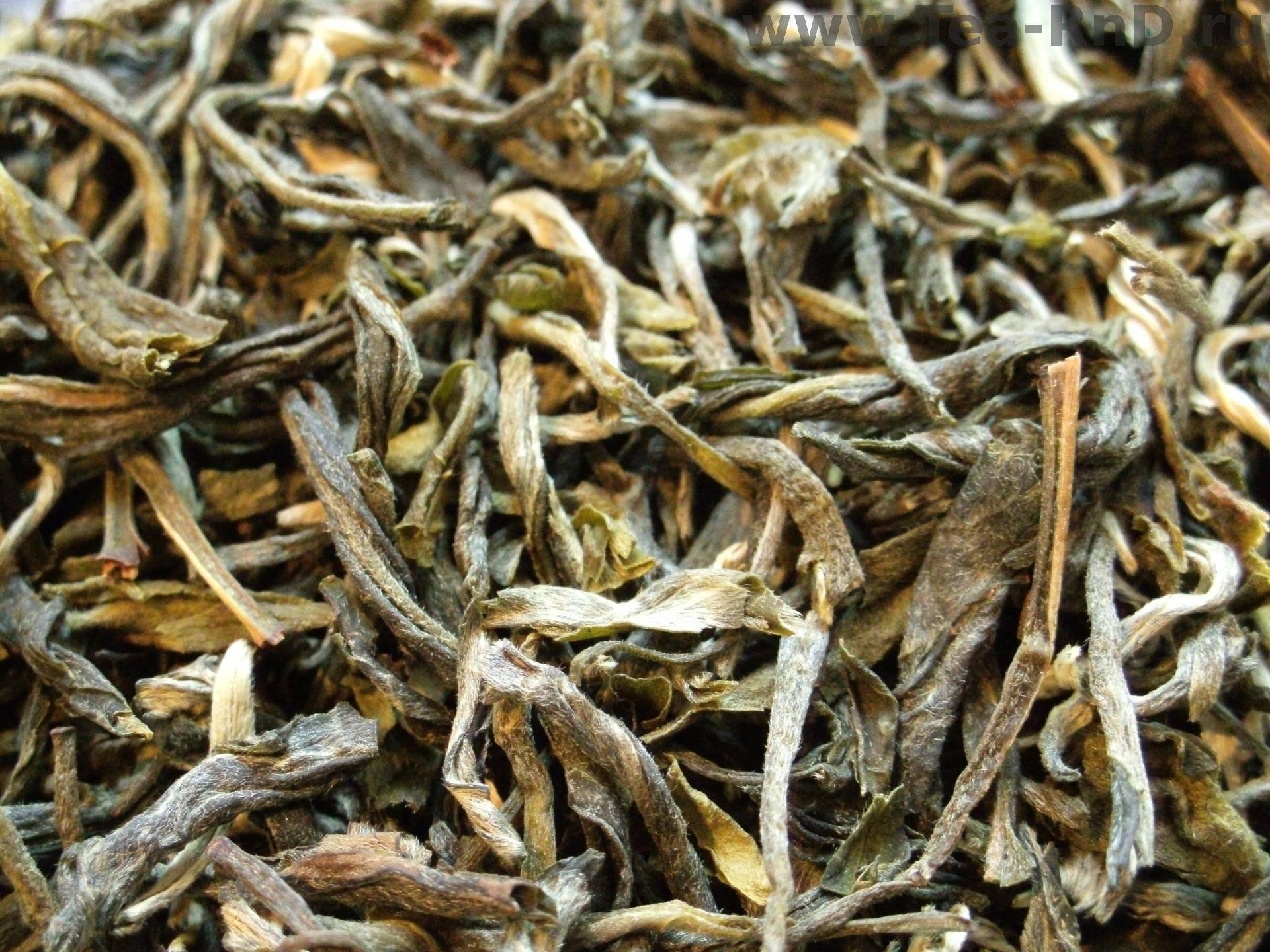 Чай пекое (pekoe): виды, пеко, opa, с типсам