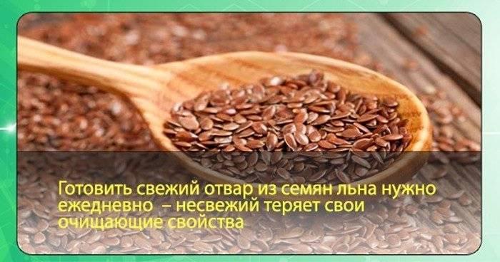 Полезные свойства семени льна. кому и как нужно принимать льняное семя? народные рецепты