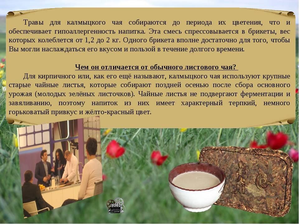 Калмыцкий чай: рецепты приготовления, история и виды джомбы