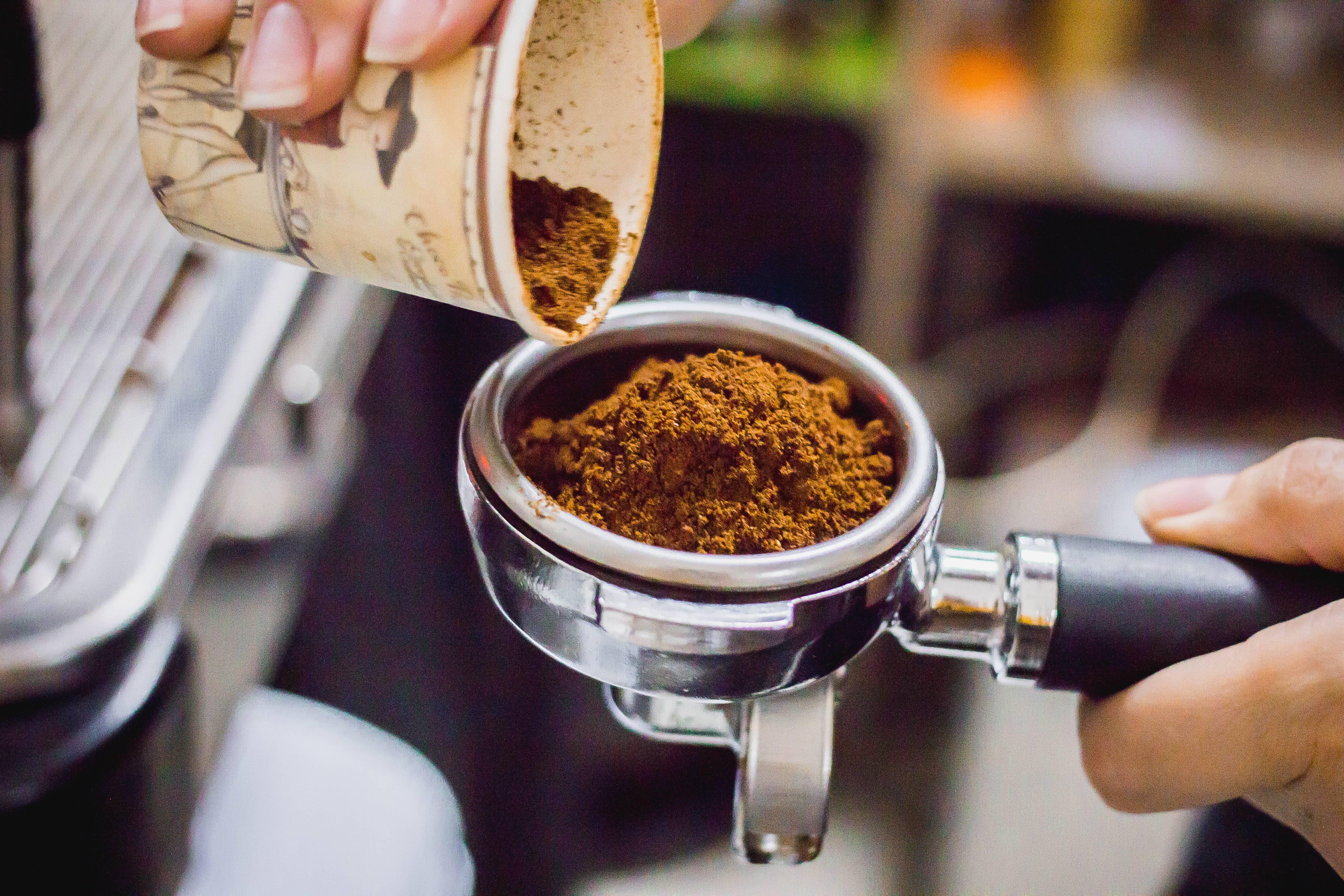 Все, что нужно знать о кофе ценителям и тем, кто только пристрастился к этому напитку