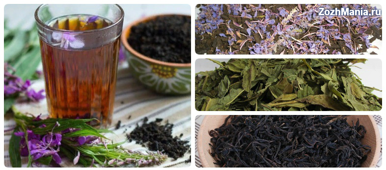 Чем полезен иван-чай для мужчин и как его употреблять: польза и вред (фото)