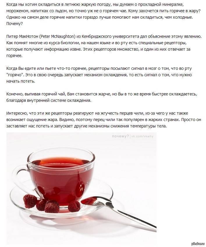 Противопоказания к кофе и 8 побочных эффектов — кому точно нельзя его пить