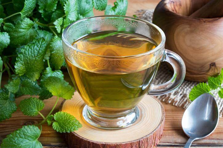 Польза и вред чая с мятой - как правильно заваривать и пить