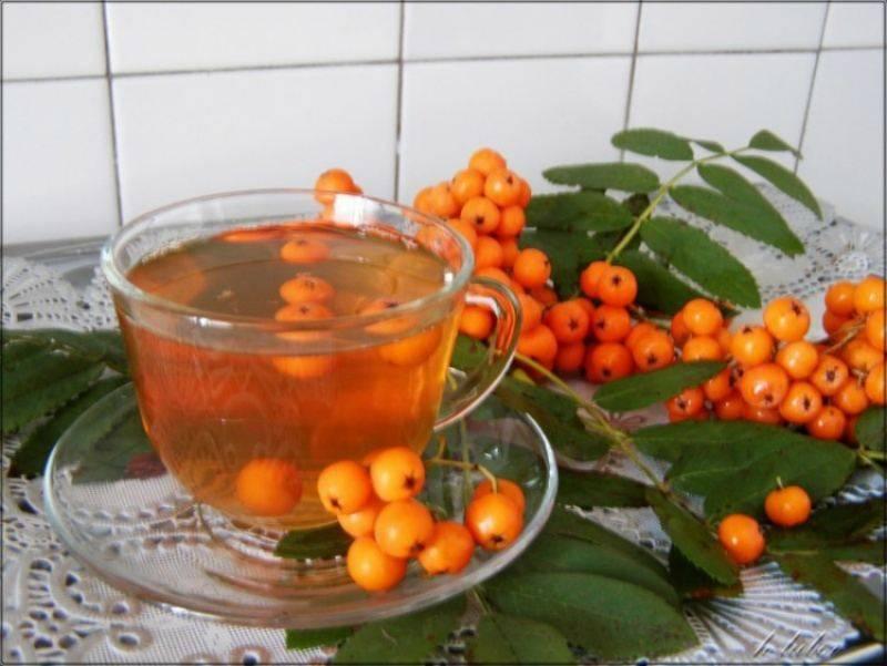 Чай с красной рябиной