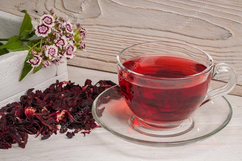Чай с гибискусом - полезные и опасные свойства, способы заваривания