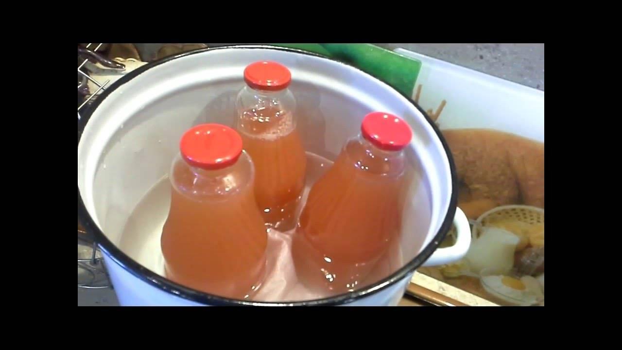 Домашний яблочный сок на зиму через соковыжималку: простые рецепты приготовления