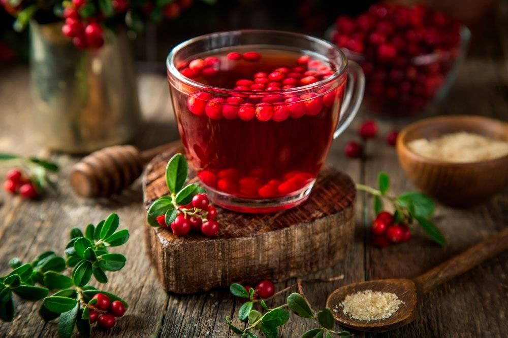 Приготовление чая с листьями брусники и его свойства