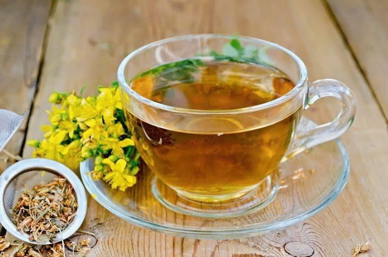 Чай из зверобоя: польза и вред, свойства, противопоказания и рецепты, как сушить