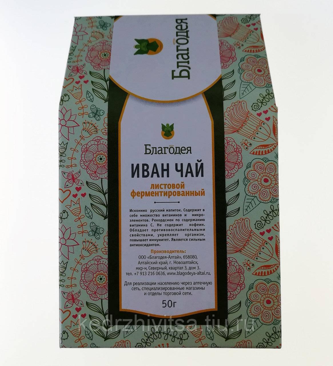 Полезные свойства и вред иван-чая для мужчин