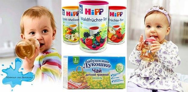 Возраст ребенка для введения чая в прикорм: со скольки месяцев можно давать