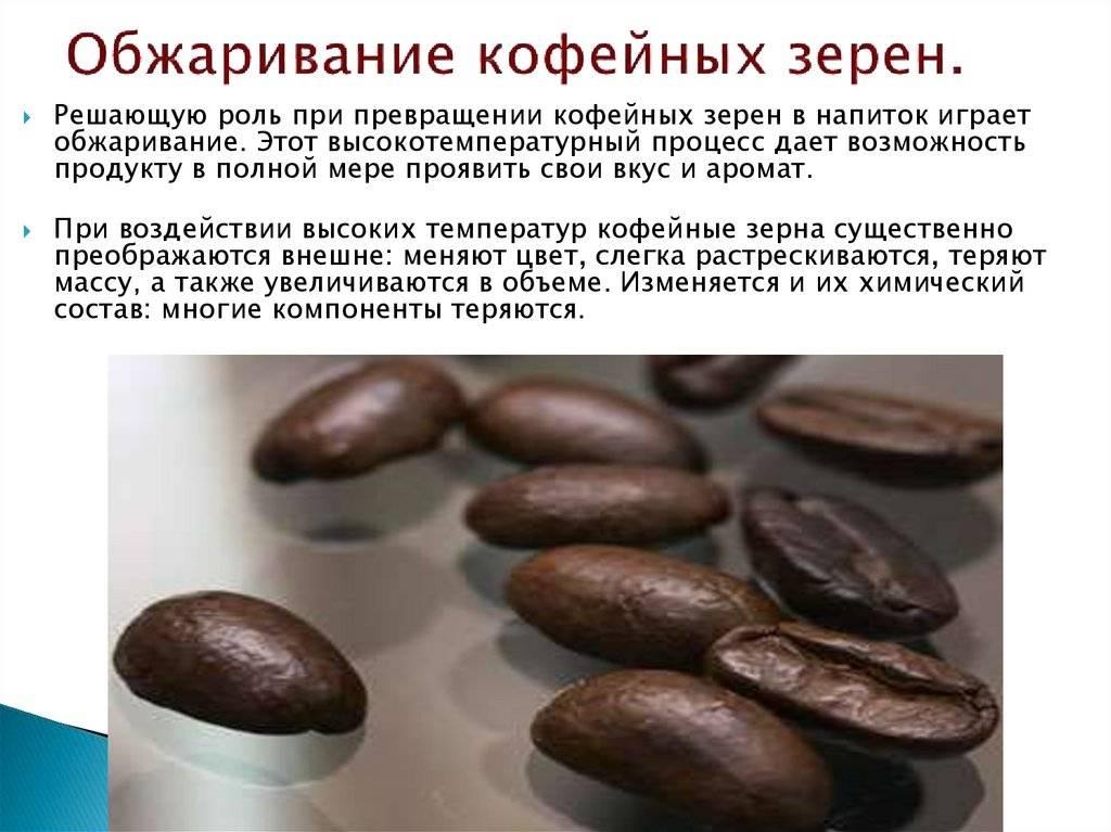 Кофейные зерна как еда – отличный источник антиоксидантов. как много можно есть, и что стоит учесть при употреблении